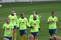 Petra Andersson, Emma Berglund, Hanna Folkesson, Pauline Hammarlund, Caroline Seger och Lotta Schelin.