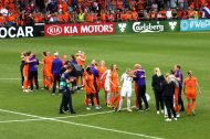 Nederländsk glädje