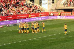 Sverige firar VM-platsen