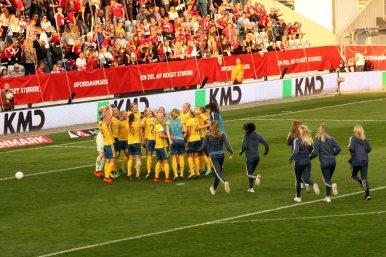 Sverige jublar över VM-platsen